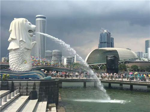 成立16年来支出逾1200万元 新加坡黄丝带基金共助4万多人开展新生活